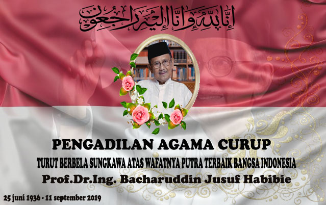 HABIBIE copy